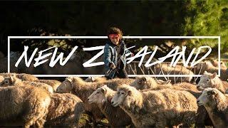 【Live Your Life】ニュージーランドへ。自分の人生 生きれてる?