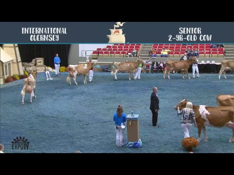 World Dairy Expo 2017   October 6th   Stream One