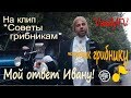 Мой ответ Ивану Урганту На клип Советы грибникам mp3