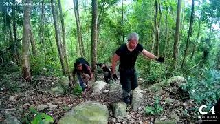 C4 Aural Mountain Ascent