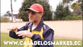 CRIADERO DE PASTORES ALEMANES CASA DE LOS MARKES (QUITOECUADOR)