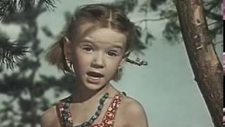"""детский, приключенческий фильм  """"Дружок"""" 1958 год по рассказам Н. Носова"""