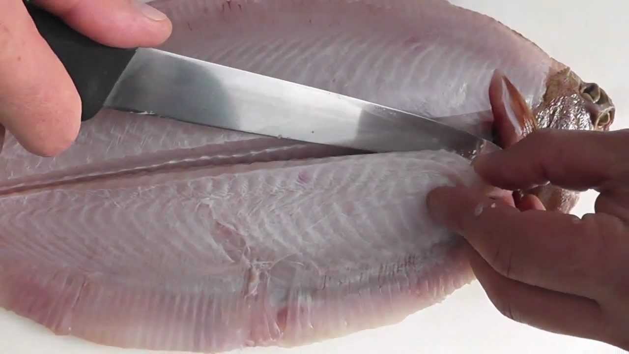 Passionate about fish how to skin quarter cut fillet a for Sole fish fillet