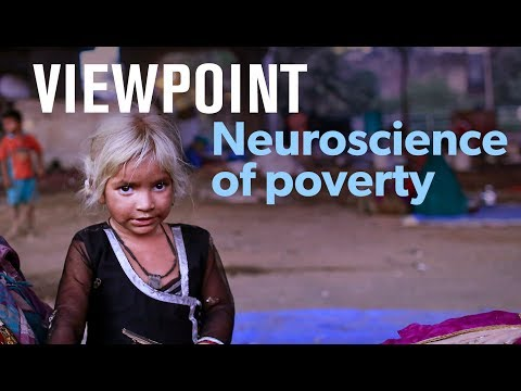 Does poverty damage children's brains? Full interview with Amy Wax | VIEWPOINT