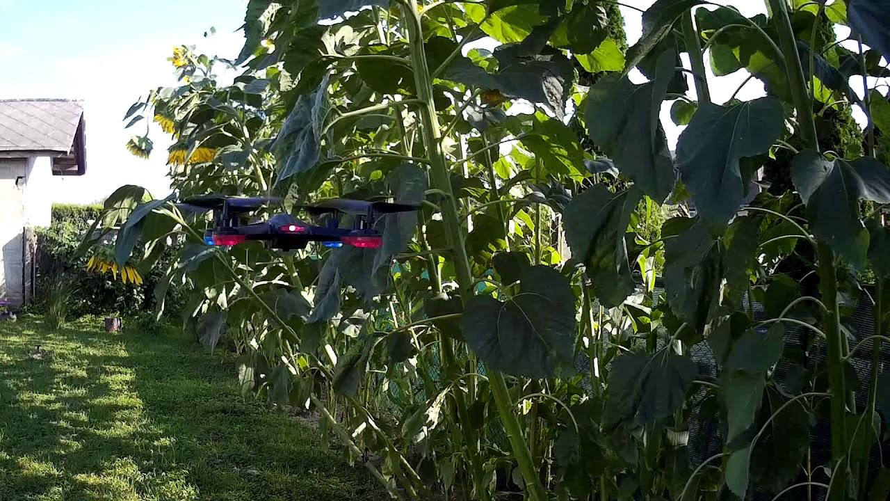 Drone aldi