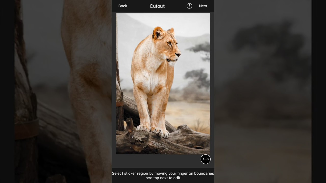 LightX - Mobile Photo Editor to Make Cutout,Remove and Blur