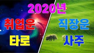 [타로 청담동마님]2020년 직장운 취업운 이동운 (Feat.오쇼젠타로)