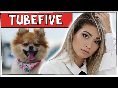 Die SÜßESTEN YouTuber Haustiere! | TubeFive