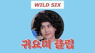 [주간 WILD SIX] 귀요미 클립