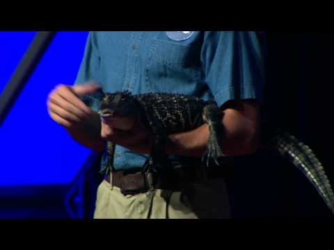 TEDxYouth@SanDiego - Peter Gilson - Biomimicry Demonstration