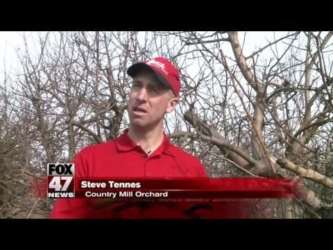 Warm weather has local farmers concerned