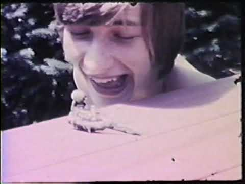 The Frogs - What the Trouble Was (Rare Late 1970's Home Footage)