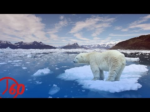 60 Seconds Of Global Warming FACTS