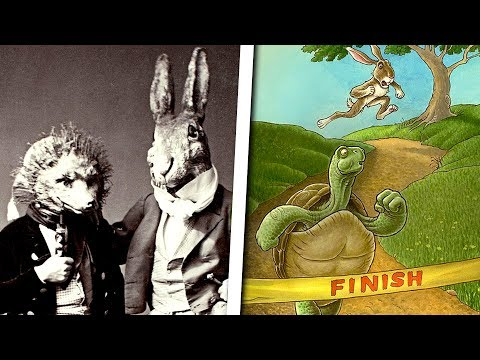 The Messed Up Origins of The Tortoise and the Hare   Fables Explained - Jon Solo