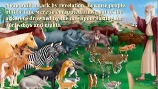The Noah's Ark in the new era