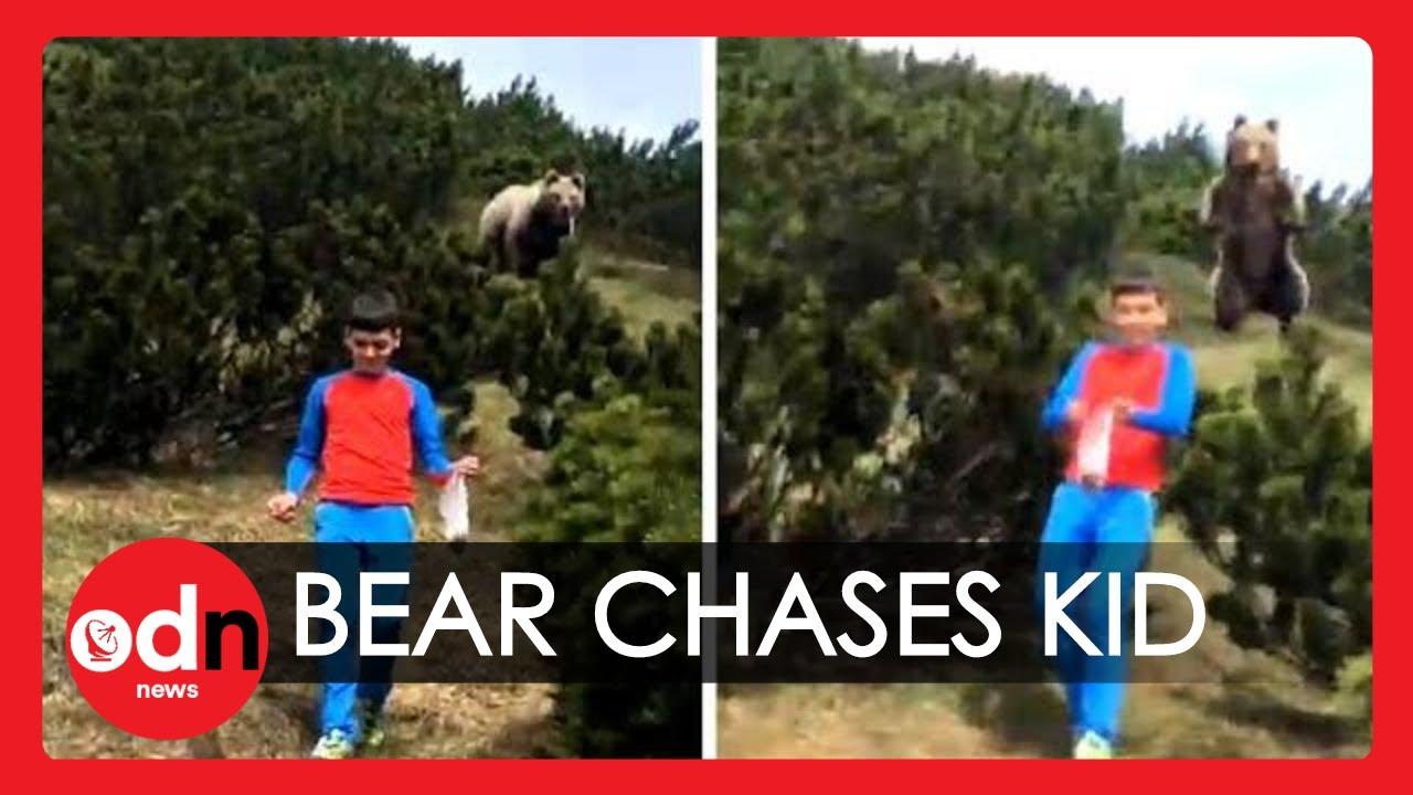 Boy's Shocking Encounter with a Bear