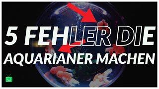 5 FEHLER DIE AQUARIANER MACHEN | GarnelenTv