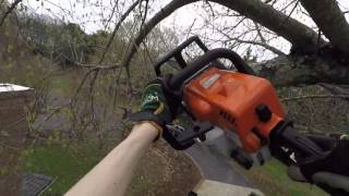 Tree trimming with a Stihl MS180