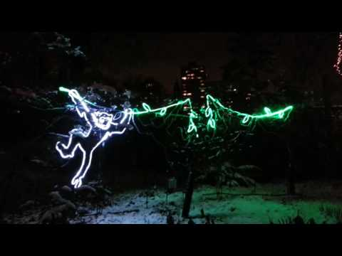 Zoo Lights: Chicago, Lincoln Park Zoo 2016