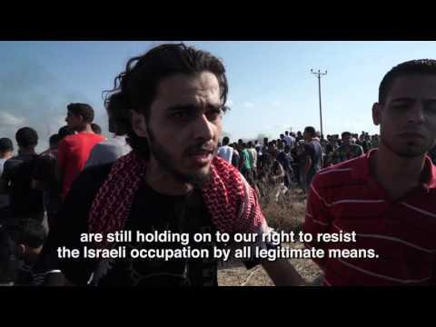 Israeli forces open fire on Palestinian demonstrators in Gaza killing seven