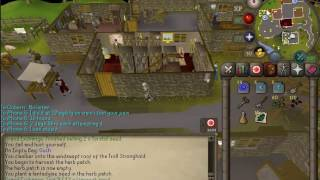 Osrs Allotments — Available Space Miami