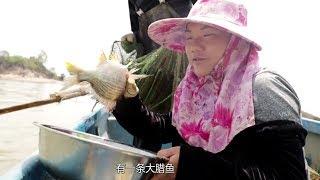 漁民出海打撈的臘魚,看著鋒刺真嚇人,做無水蒸魚絕對美味【漁小仙】