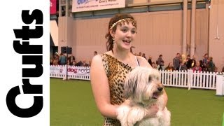 Young Kennel Club Heelwork To Music (with Ashleigh And Pudsey)