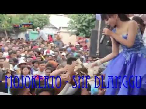 KELAYUNG - LAYUNG KERETO JOWO TASYA NEW PALLAPA