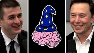 Elon Musk: Limbic System, Cerebral Cortex, and a Tertiary Layer of Digital Super-Intelligence