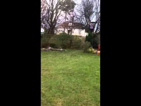 Our Garden Zipwire