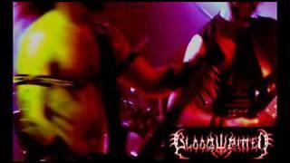 Bloodwritten - Reborn Through Fire