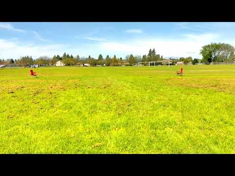 Rusty All Breed Sprint Racing with Parson Russell terriers #2, Dixon, CA, April 7 2019