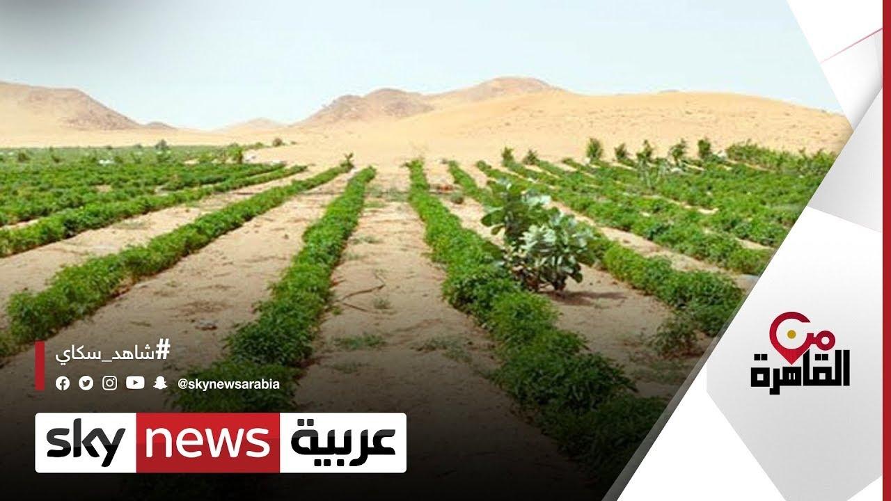 إطلاق تقرير التنمية البشرية في مصر 2021 | #من_القاهرة  - 21:54-2021 / 9 / 18