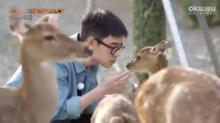 Gambar cover Exo 엑소 KYUNGSOO is happy playing with deer and deer hypnotized by it 😇😇