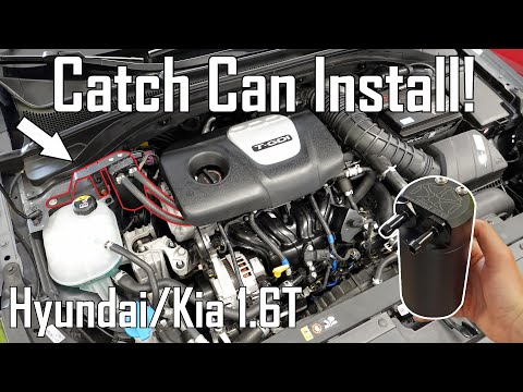 How To: Install an Oil Catch Can | Hyundai Elantra GT N Line