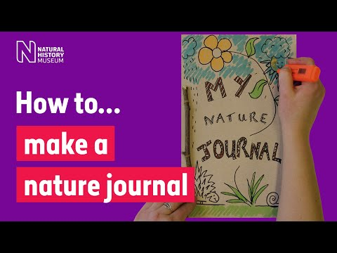 How to make a nature journal so you can record wildlife like a scientist | Natural History Museum