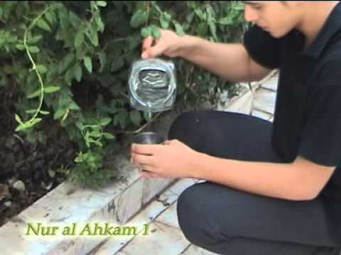 Vídeo Imam cursos