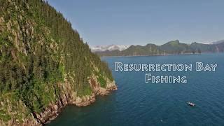Kenai Riverside Fishing Resurrection Bay