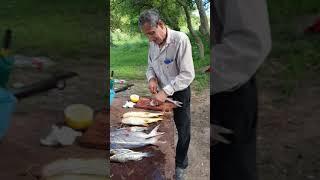 Pesca en la cascada