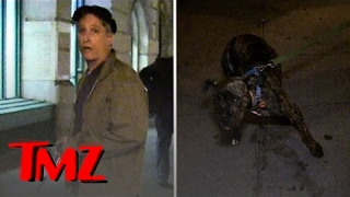Jon Stewart -- Cutest 3 Legged Dog | TMZ