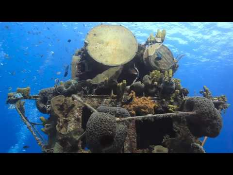 The Cayman Islands for Recreational Divers