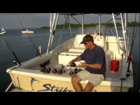 Penn/Squall Lever Drag 40 LD LH Linkshand Multirolle
