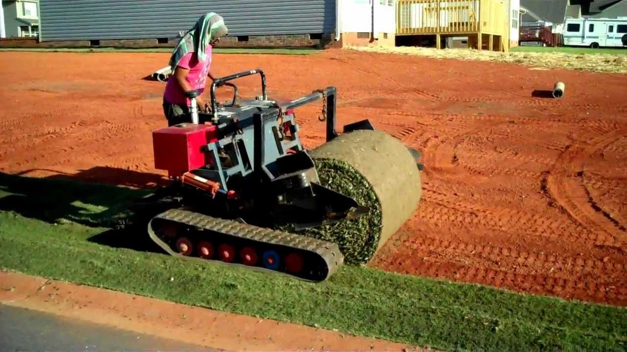 HOW TO LAY SOD BERMUDA GRASS LAYING MACHINE - YouTube