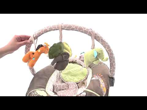 Babydreamlv  Summer Infant Carters Wildlife Bouncer