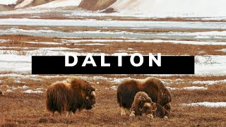 The DALTON HIGHWAY - Alaska Road Trip Travel Documentary