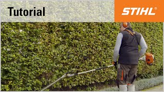 Petrol long-reach hedge trimmer cutting technique: vertical cutting with an angled cutter bar