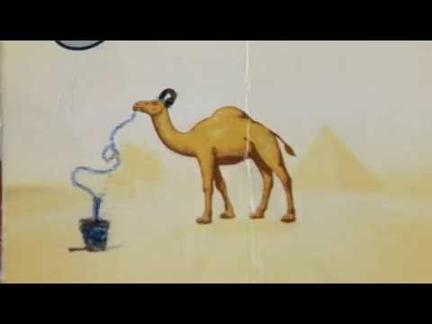 The Melting Pot hostel TANGIER (Morocco)
