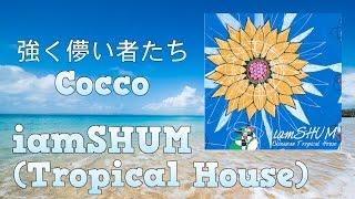 iamSHUM / 沖縄の...