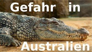 SO GEFÄHRLICH IST AUSTRALIEN WIRKLICH!