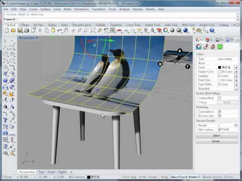 Rhino 3D Custom Mapping